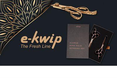 Brancheneintrag: e-kwip