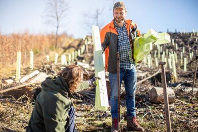 Bild zu Erster Friseurwald in Rheinland-Pfalz wird gepflanzt
