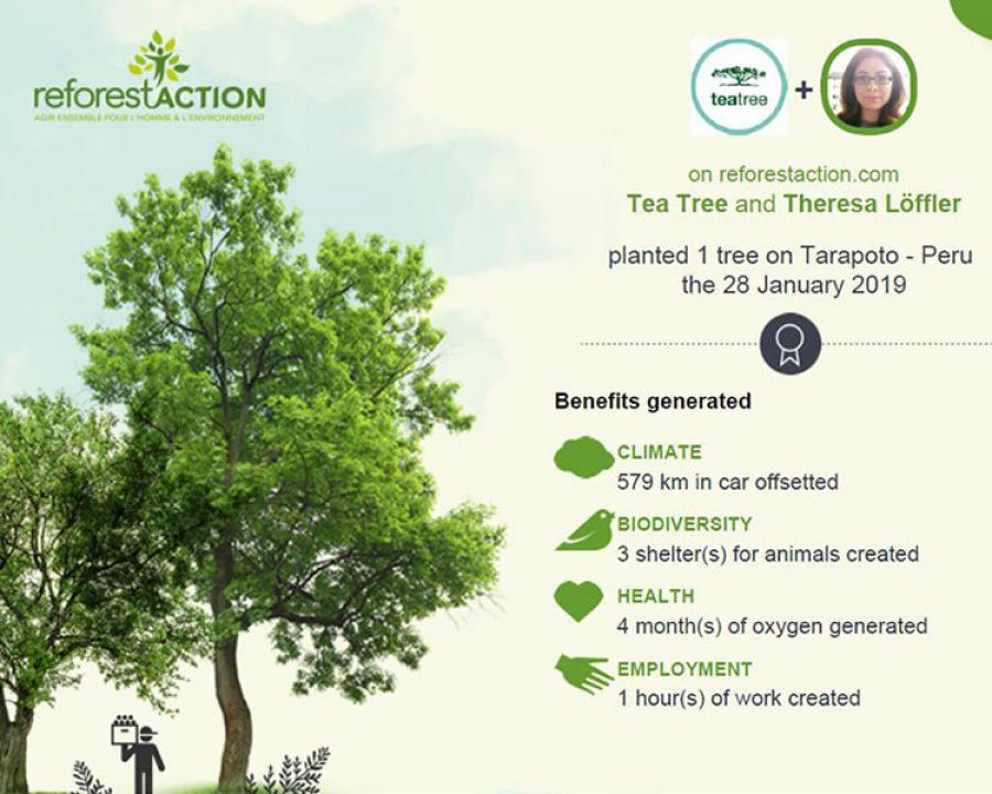 Frisuren 2019 - Earth Day 2019 - Bäume pflanzen mit Paul Mitchell®