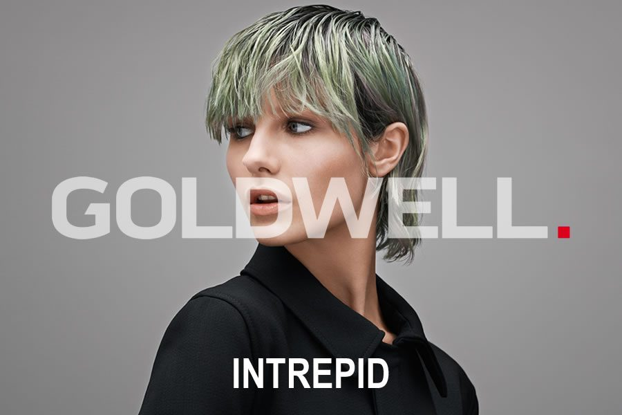 Bild INTREPID - Die Couture Collection 2020 von Goldwell