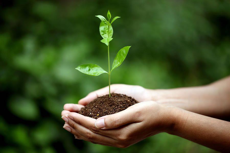 Earth Day: Mit Paul Mitchell® die Welt grüner machen