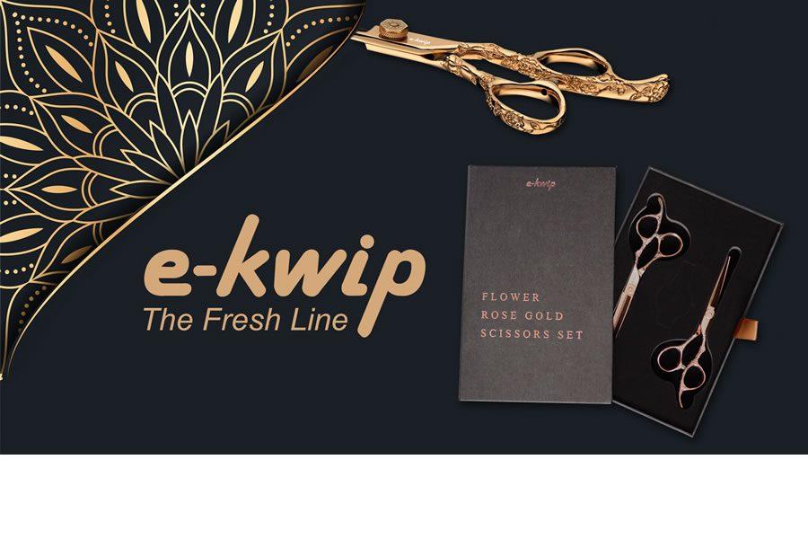 Bild e-kwip
