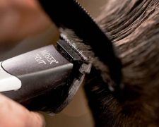 Moser® T-CUT Collection - Step-by-Step: