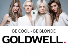 DIE COOL BLONDE COLLECTION: News, Szene