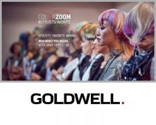 GOLDWELL Stylists Favorite Award 2017: