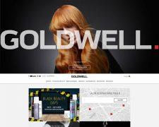 Goldwell Deutschland - Bild