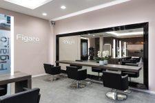 3   Salonvorstellung Figaro