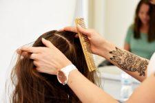 12   Salonkunden mit Kopfhaut- und Haarproblemen im Fokus