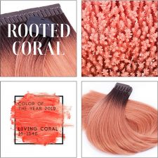 Farbe des Jahres 2019 - jetzt als Rooted Coral!