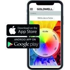 4   Goldwell Education 2020