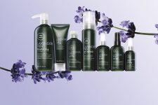 Tea Tree Lavender Mint - Bild