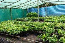15 | Earth Day: Mit Paul Mitchell® die Welt grüner machen