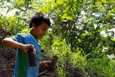 17 | Earth Day: Mit Paul Mitchell® die Welt grüner machen