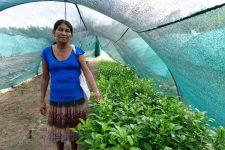 19 | Earth Day: Mit Paul Mitchell® die Welt grüner machen