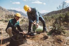 21 | Earth Day: Mit Paul Mitchell® die Welt grüner machen