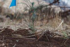 29 | Earth Day: Mit Paul Mitchell® die Welt grüner machen