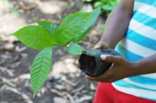 9 | Earth Day: Mit Paul Mitchell® die Welt grüner machen
