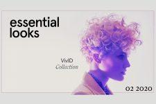 Essential Looks: VivID Collection - Bild