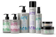 INDOLA: ACT NOW! - Bild