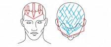 Frisuren-Trends 6 - Men Trendlook 2021: Distinctive Collection