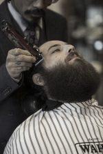 Frisuren-Trends 2 - Professionelle Bartpflege