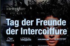 2. digitaler Tag der Freunde der Intercoiffure Suisse - Bild