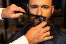 Frisuren-Trends 8 - Neue Trendlooks mit Red Deer® und den Produkten von CHI MAN